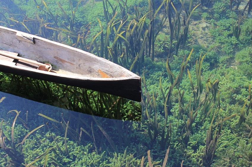 Islands of Fertility in Burkina Faso